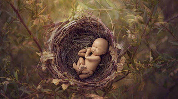 anne geddes photography